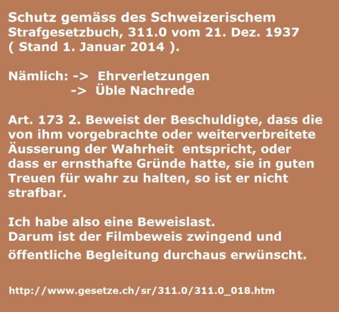 CH-Strafgesetzbuch Art. 173 2