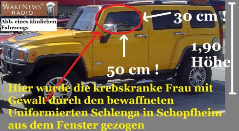 gelber Hummer Schlenga