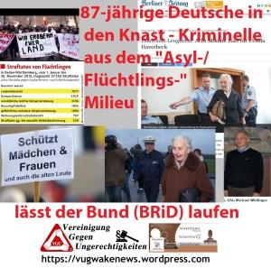 87-jaehrige-deutsche-in-den-knast-kriminelle-aus-dem-asyl-fluechtlings-milieu-laesst-der-bund-brid-laufen
