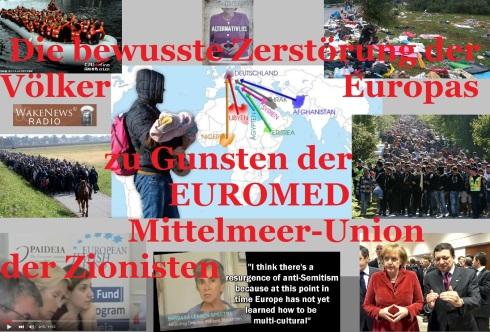 die-bewusste-zerstoerung-der-voelker-europas-zu-gunsten-der-euromed-mittelmeer-union-der-zionisten